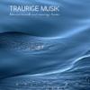 Traurige Musik: Traurige Lieder und Klaviermusik - Traurige Lieder & Klavier