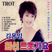 최신 트롯가요, Vol. 3-Kim Yongim