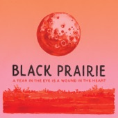 Black Prairie - How Do You Ruin Me?