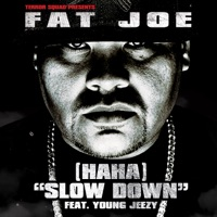 (Ha Ha) Slow Down [feat. Young Jeezy] - Single Mp3 Download