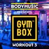 Bodymusic Presents Gymbox - Workout 3 - Разные артисты