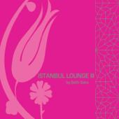 Istanbul Lounge, Vol. 3