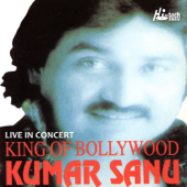 King of Bollywood (Live in Concert)