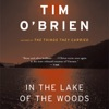 In the Lake of the Woods (Unabridged) AudioBook Download