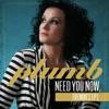 Need You Now (Remixes), Plumb