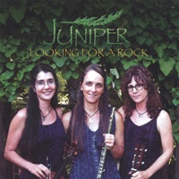 Looking for a Rock by Juniper on Apple Music