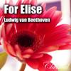 For Elise , Fur Elise - For Elise , Fur Elise [ L. V. Beethoven ]