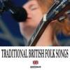 Various Artists - Traditional Folk Album