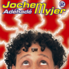 Jochem Myjer - Hoofdstuk 17 kunstwerk