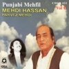 Punjabi Mehfil Vol 6