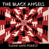 The Black Angels - An Occurance at 4507 South Third Street