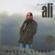 Diyardan Diyara - Kıvırcık Ali