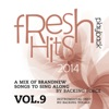 Fresh Playback Hits - 2014 - Vol. 9 (Instrumental Only - No Backing Vocals)