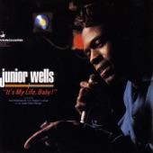 Junior Wells - (I Got a) Stomach Ache