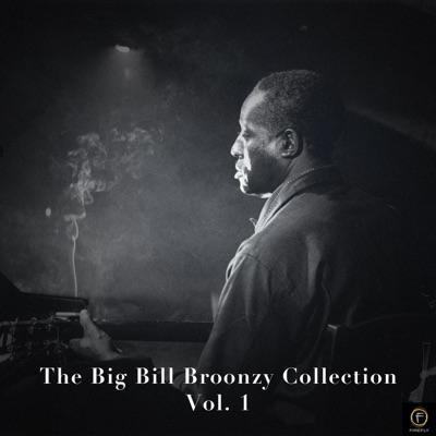 The Big Bill Broonzy Collection, Vol. 1 - Big Bill Broonzy