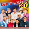 Show De Manele 2013, Various Artists