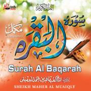 Surah Al Baqarah (Tilawat-E-Quran) - Maher Al Mueaqly - Maher Al Mueaqly