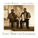 Goin' Down to Louisiana
