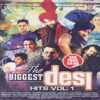 The Biggest Desi Hits, Vol.1