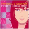 Never Knew Love - EP, Greatski & Hardwell
