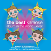 The Best Karaoke Album In the World...Ever!