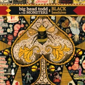 Big Head Todd & The Monsters - Fear Greed and Ignorance