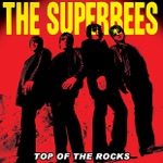 The Superbees - Silver Jet
