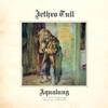 Jethro Tull - Mother Goose (New Stereo Mix) artwork