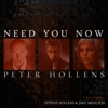 Peter Hollens - Need You Now A Cappella feat Evynne Hollens  Jake Moulton  Single Album