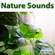 Waterfall Sounds - Sounds of Nature