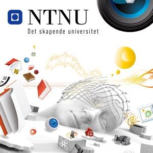 [SPRÅK6200] Sammenliknende språkanalyse i norsk og engelsk (HD)