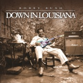 Bobby Rush - You Just Like a Dresser
