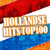 Hollandse Hits Top 100
