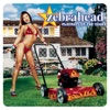 Playmate of the Year by Zebrahead