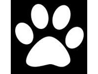 Podcast Animalistas