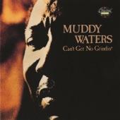 Muddy Waters - Garbage Man