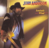 John Anderson - When it Comes to You