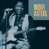 Muddy Waters - Mannish Boy