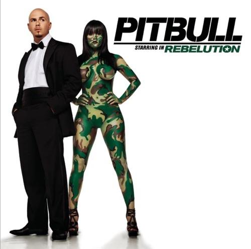 Pitbull - Pitbull Starring In: Rebelution