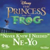 Never Knew I Needed From The Princess and the Frog Single