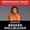 Broken Hallelujah Performance Tracks EP
