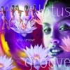 Lotus Groove