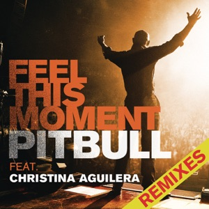 Feel This Moment (Remixes) [feat. Christina Aguilera] - EP Mp3 Download