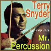 Terry Snyder - Oye Negra