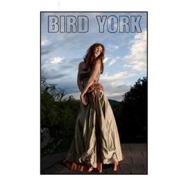 Bird York - In the Deep Lyrics   SongMeanings