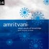 Amritvani Sweet Words of Knowledge Brief Orations In Hindi Vol 4