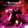 the-ironhearted-flag-vol-2-reformation-side