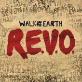Walk off the Earth - Royals