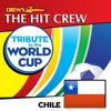 Tribute to the World Cup Chile