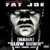Ha Ha Slow Down feat Young Jeezy Single